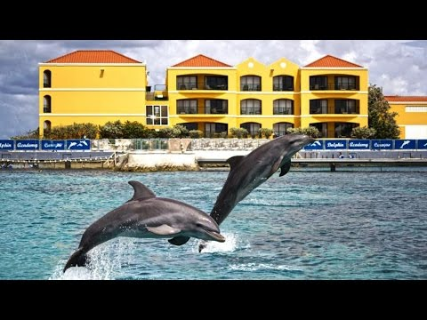 Top10 Recommended Hotels in Willemstad, Curaçao, Caribbean - 동영상